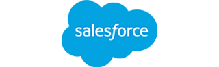 Salesforce - Partner - logo