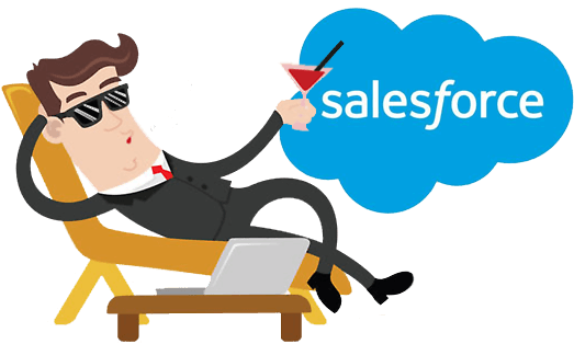Salesforce Partner - 1